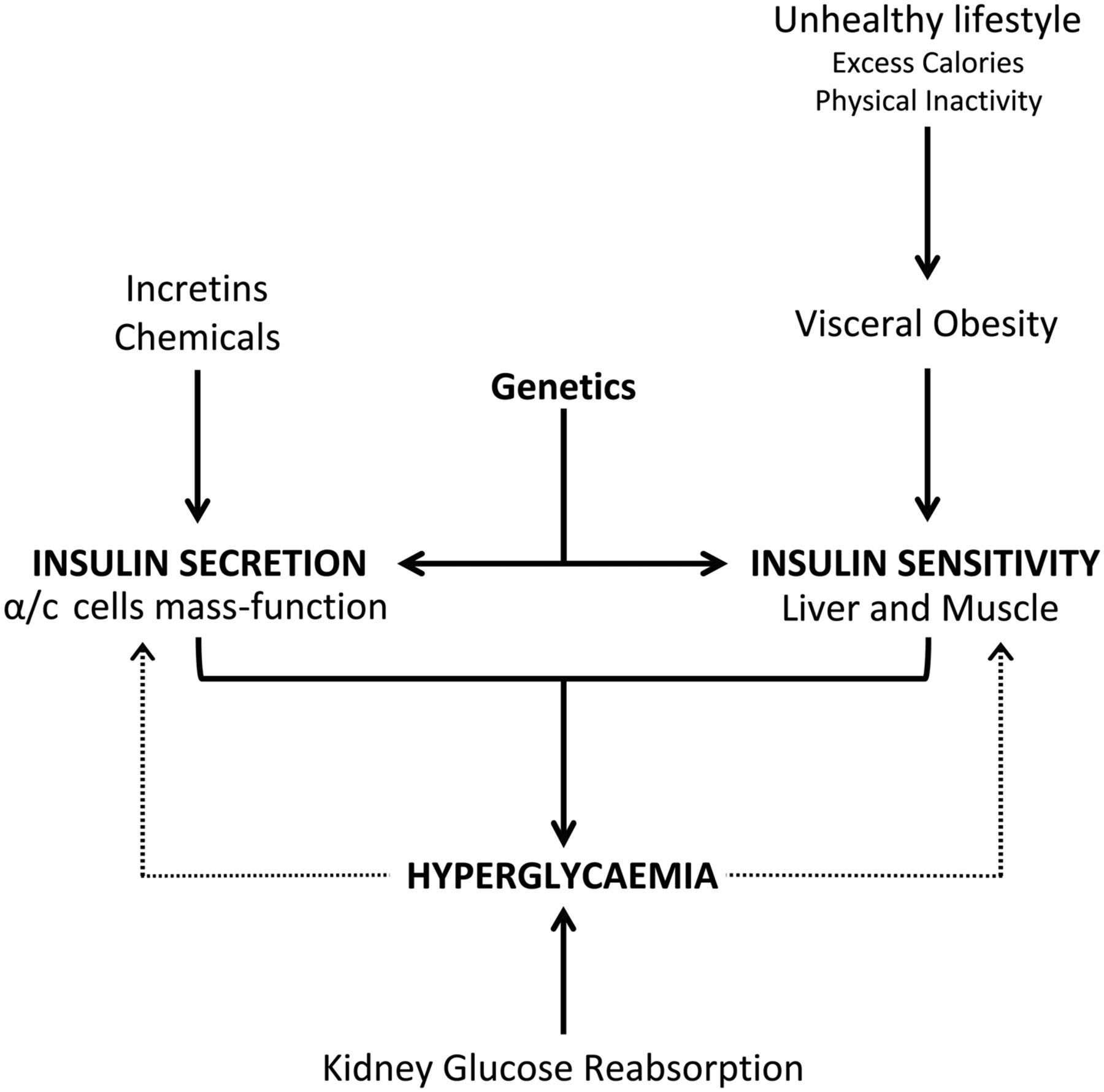 pathophysiology of type 1 and type 2 diabetes mellitus: a 90-year