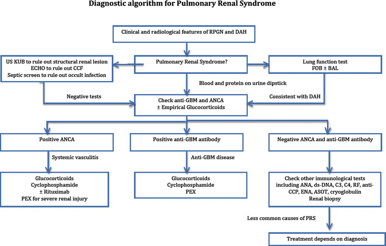 Pulmonary Renal Syndrome A Life Threatening But Treatable Condition