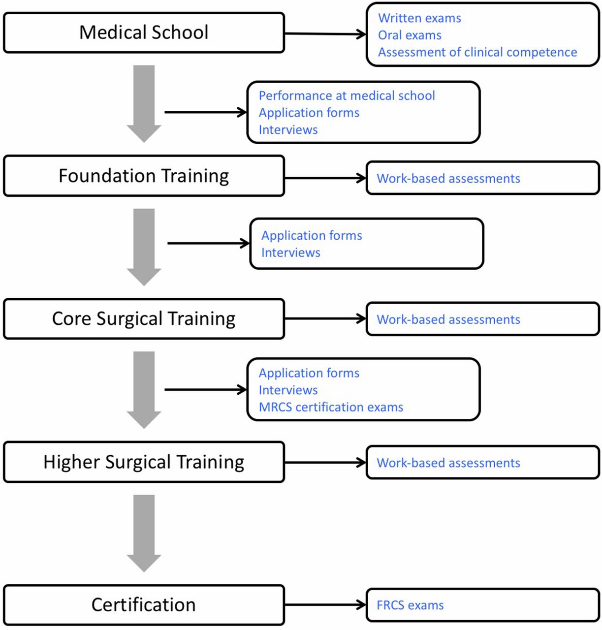 Training assessment and accreditation in surgery postgraduate download figure xflitez Gallery
